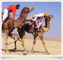 Sport Camel Golf, Rajasthan Adventure